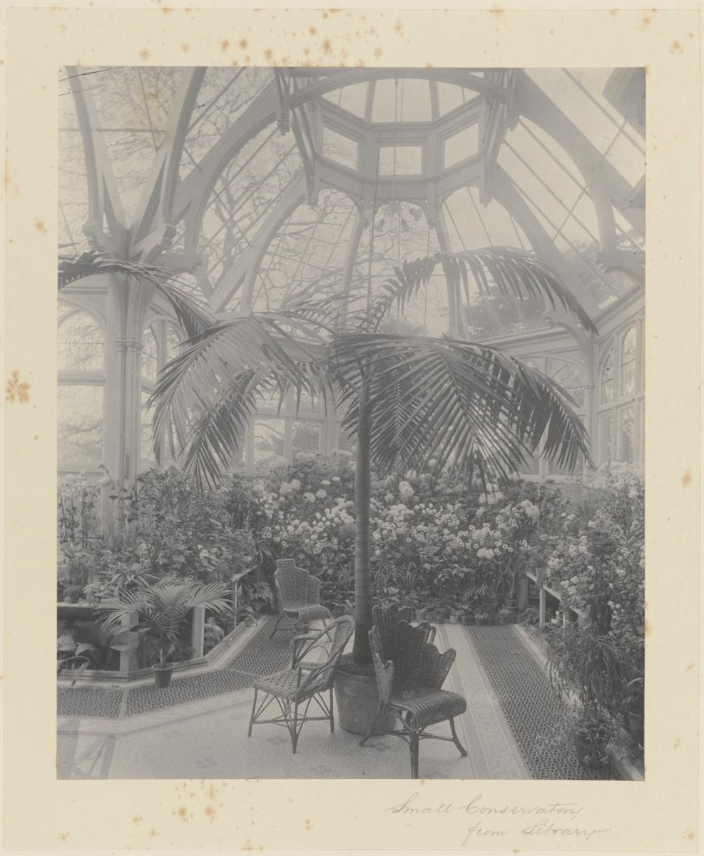 Small Conservatory from Library