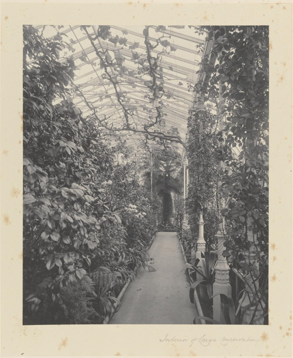 Interior of Large Conservatory